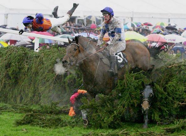 Mike's favourite photo: so many stories going on in this image of the 2001 Grand National (Photo: Mike King)